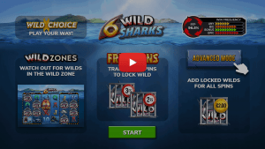 6 Wild Sharks Video