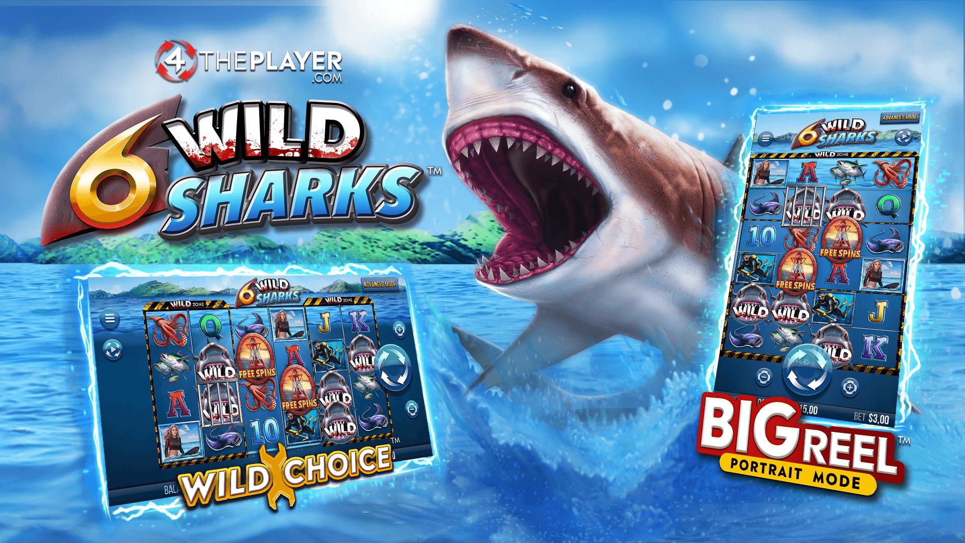 6 Wild Shark